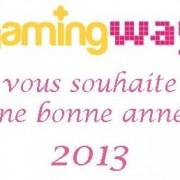 Tous nos voeux pour 2013 !