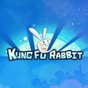Test : Kung Fu Rabbit (Wii U eShop)