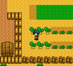 harvest_moon_3ds_03