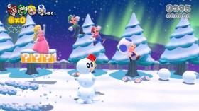 Super_Mario_3D_Worlds_05