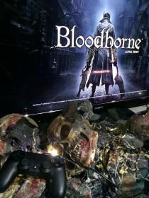 PGW_2014_stand_playstation_bloodborne_04
