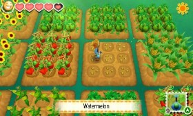 story-of-seasons-3ds-06