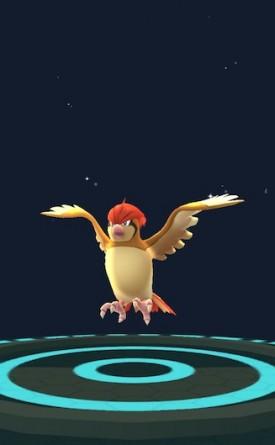 pokemon-go-astuces-roucool-02