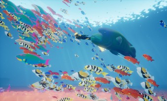 abzu_pc_poissons_colores