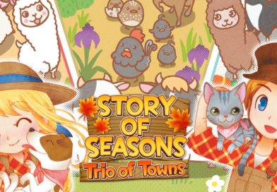 Test : Story of Seasons: Trio of Towns (3DS)